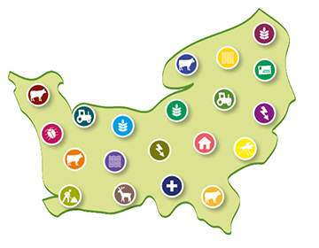La carte numérique des pratiques
