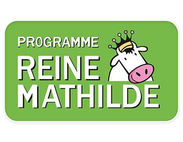 Reine Mathilde : semer sous couvert