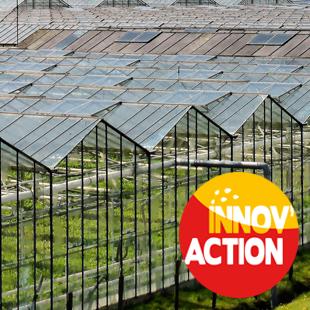 Journée mécanisation et désherbage en horticulture (50)