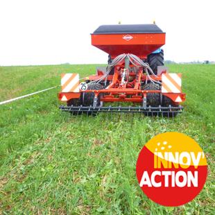 Réussir un semis de plante compagne sur itinéraire maïs sans labour (50)