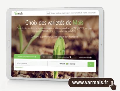 VARMAÏS, outil en ligne de référence, évaluer et choisir les variétés de maïs en France