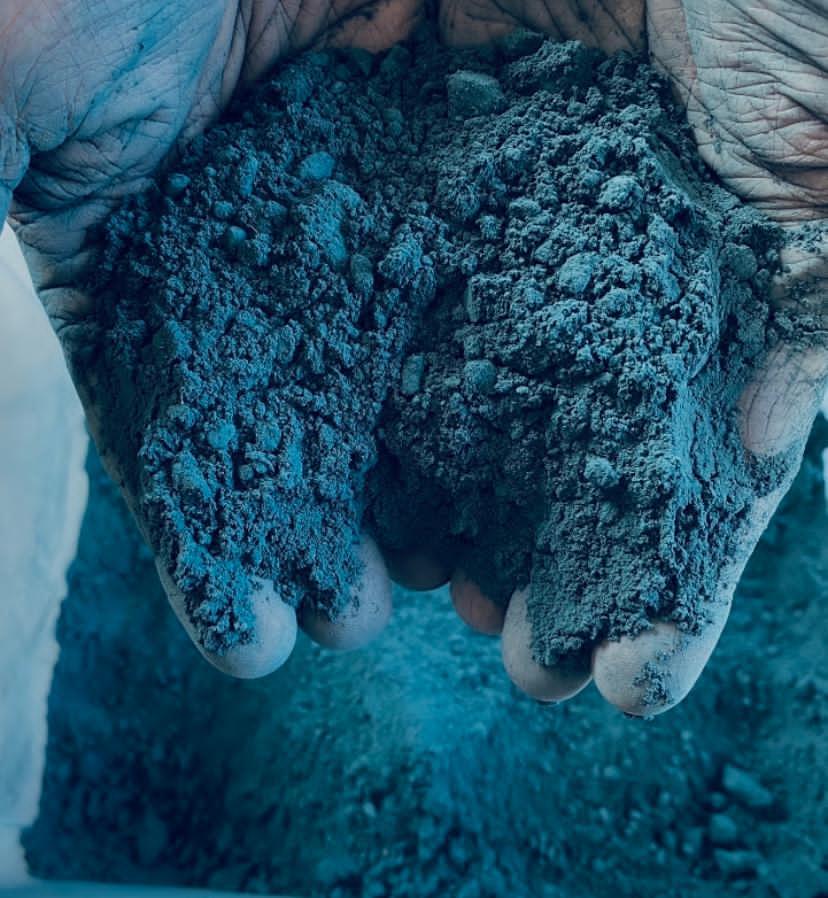 Transformation Industrielle du pigment bleu naturel : l'indigo issu du Pastel des Teinturiers produit par les agriculteurs Normands