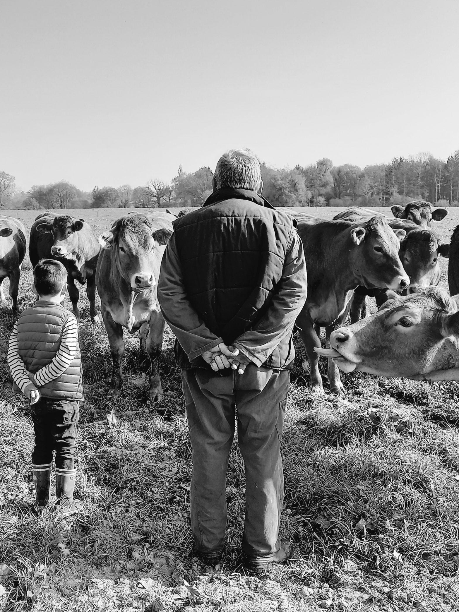 Outils de sensibilisation au bien-être animal